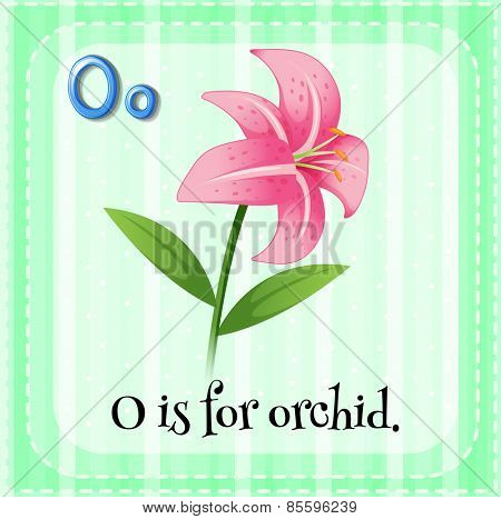 Flash card letter O is for orchid