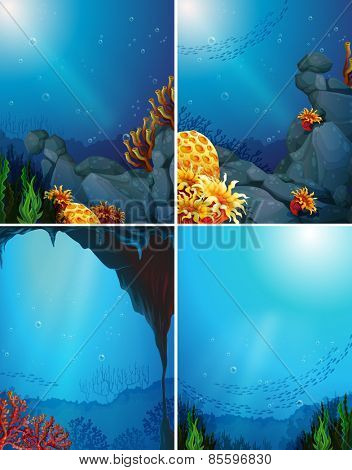 Four underwater scenes and coral reef