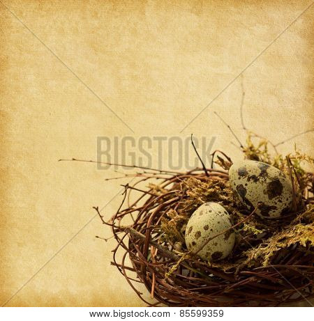Two Quail eggs in nest.   Shallow depth of field, focus on near egg.  Easter Decor. Photo in retro style. Added paper texture.