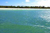 stock photo of mauritius  - ile du cerfs seaweed in indian ocean mauritius mountain sand isle sky and rock - JPG