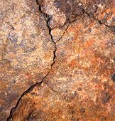 picture of lichenes  - lanzarote spain abstract texture of a broke star dry sand and lichens - JPG
