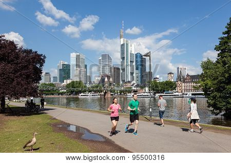Riverwalk In Frankfurt Main, Germany