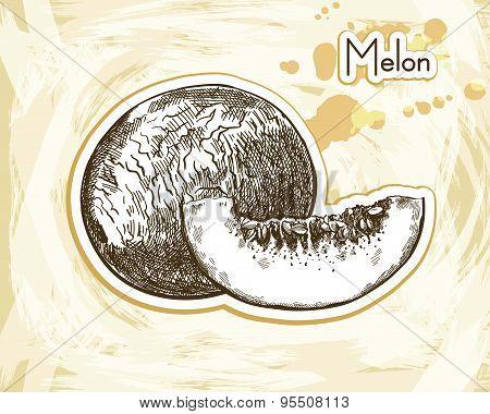 melon sketch