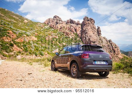 Dark Purple Citroen C4 Cactus