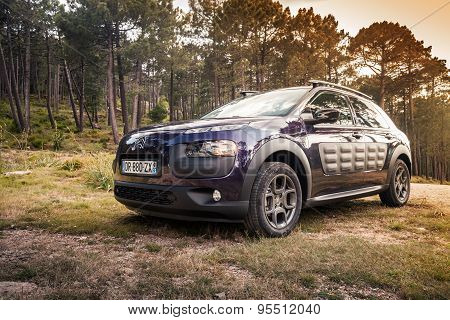 Dark Purple Citroen C4 Cactus In The Forest