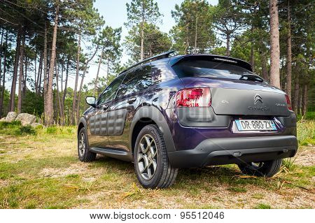 Dark Purple Citroen C4 Cactus, Back View