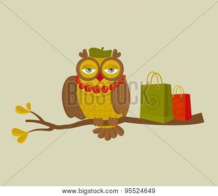 Portrait of fashionable owl on great autumn sale.