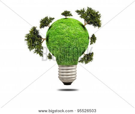 Green Grass Light Bulb Isolated