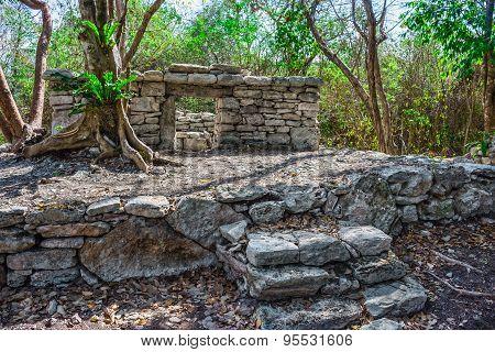 Mayan Ruins 6