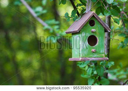 Green birdhouse hanging in tree