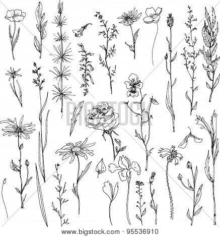 floral doodle set