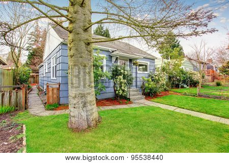Authentic Blue House With Lots Of Greenery.
