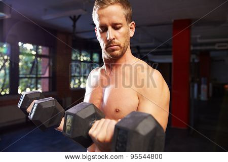 Bare Chested Man In Gym Lifting Hand Weights