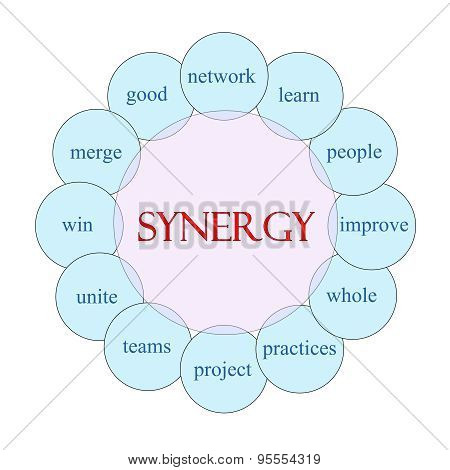 Synergy Circular Word Concept