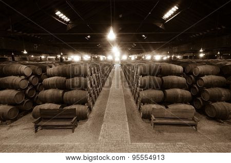 Barrels in the wine cellar, Porto, Portugal