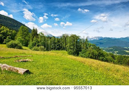 Green grassy field with wooden logs and green trees against scenic mountain backdrop beneath blue sky and white clouds