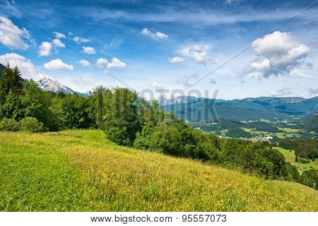 Green grassy field with trees against a scenic mountain backdrop beneath blue sky with white clouds