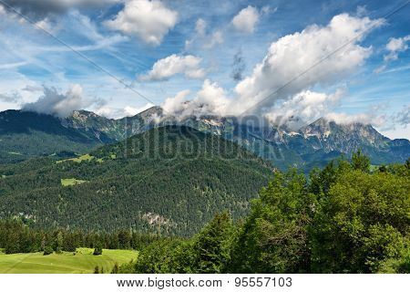 Majestic scenic view of snow-capped mountains covered in fir trees beneath blue sky with white clouds, small green grassy plateau visible in foreground
