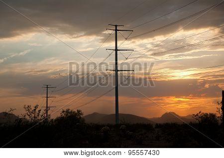 Power Poles In Desert