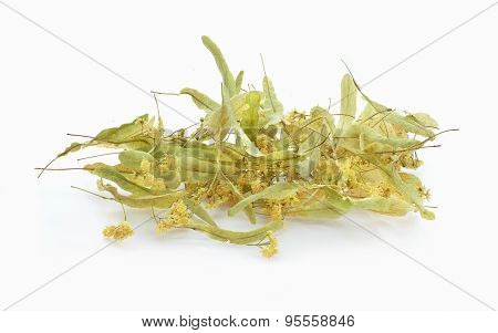 Dried Linden Blossoms