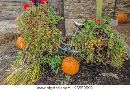 Bicycle With Flowers And Pumpkins