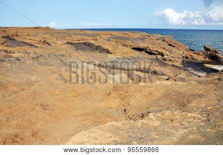 Ocean Front Terrain