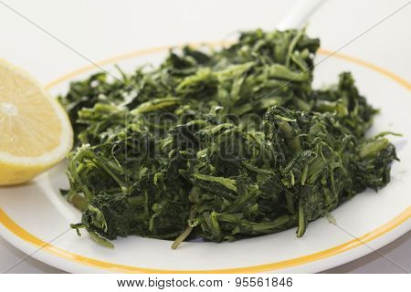 Chicory In Pan