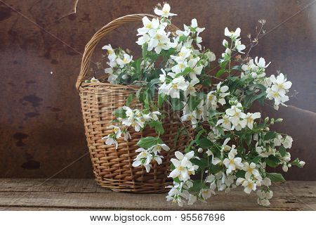 Bouquet From Jasmin Branches In A Wattled Basket On A Wooden Table