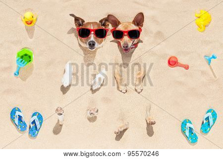 Dogs Buried In Sand