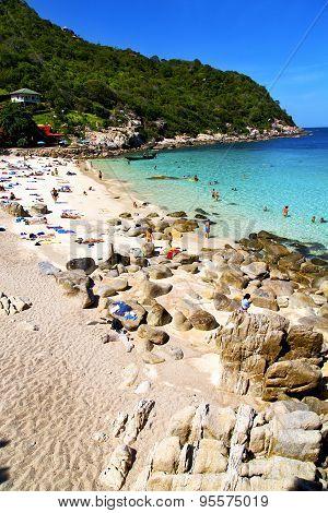 Asia In The  Kho Tao Bay Isle White  Beach  Swim