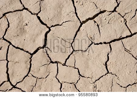 Surface Of Dry Cracking Parched Earth
