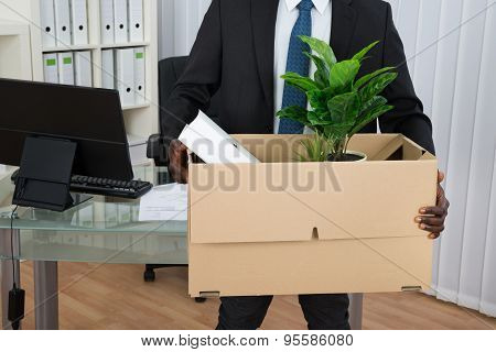 Businessman Holding Folder And Plant In Cardboard Box