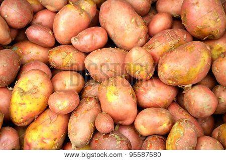 Sweet yum potato at the market