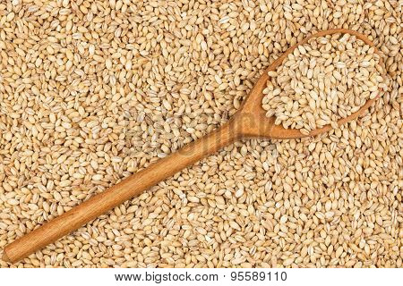 Wooden Spoon With Pearl Barley