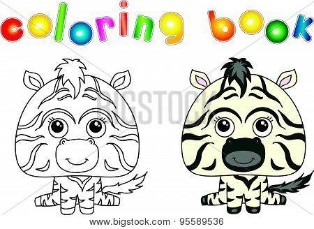 Funny And Cute Zebra