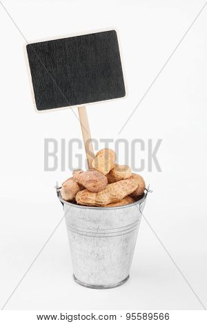 Pointer, Price In Bucket Of  Peanuts
