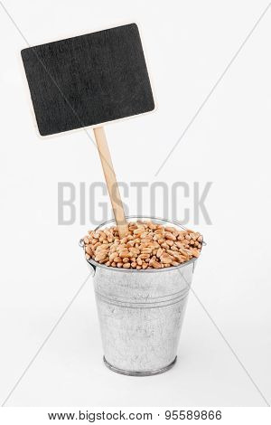 Pointer, Price In Bucket Of  Wheat Grains