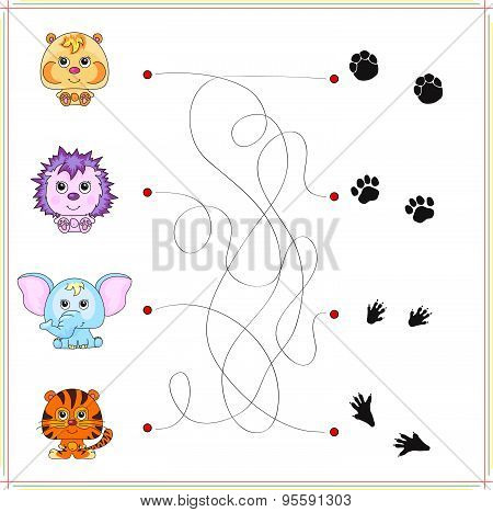 Hamster, Hedgehog, Elephant And Tiger With Their Traces Of Foot