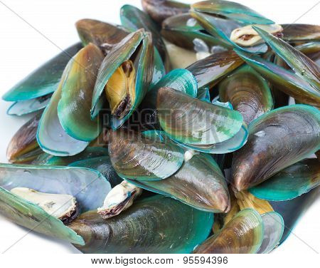 Baked Green Mussels  On White Background
