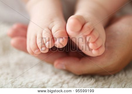 Adult hands holding baby feet, closeup