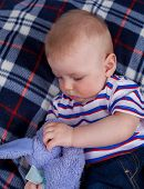 picture of little boys only  - Little boy sitting on plaid with plush toy - JPG