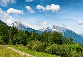 picture of snow capped mountains  - Pathway through grassy meadow with lush green trees - JPG