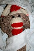 picture of sock-monkey  - sock monkey playing in a pile of white socks - JPG