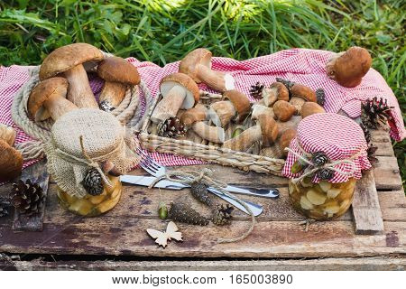 Raw White Mushrooms, Pine Cones And Decorations