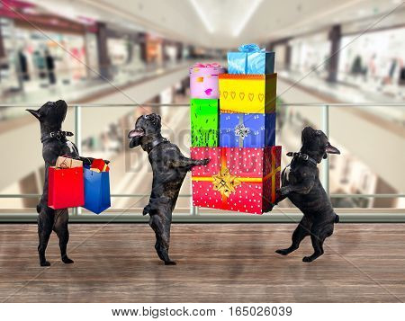 Dogs in the Mall. Are a lot of gifts and purchases