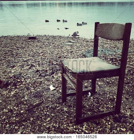 winter mood with a chairs and ducks by the Danube