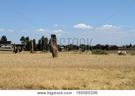 The Menhirs of Aksum in Ethiopia in Afrika