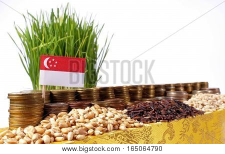 Singapore Flag Waving With Stack Of Money Coins And Piles Of Wheat And Rice Seeds