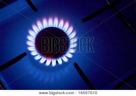 Gas cooker with burning fire