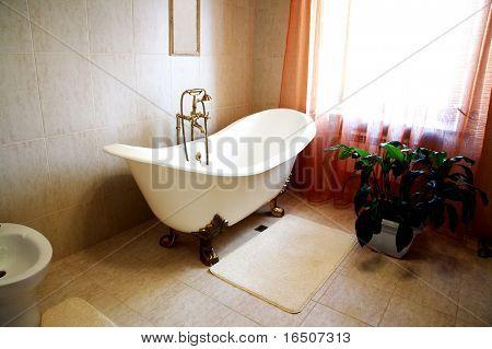 Baño con una hermosa planta de la casa